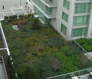 https-::commons.wikimedia.org:wiki:File-Victoria_BC_Marriott_green_roof