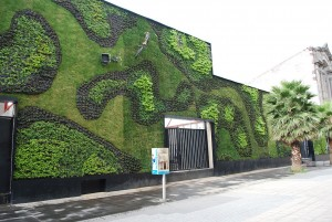 Green wall at the Universidad del Claustro de Sor Juana in the historic center of Mexico City.