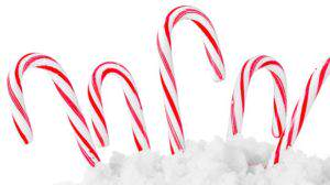Festive Red and White Peppermint Candy Canes. studio shot